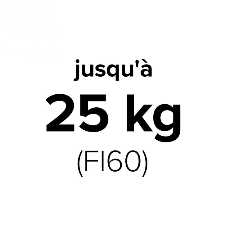 silniki-udzwig-25kg-FI60-fr