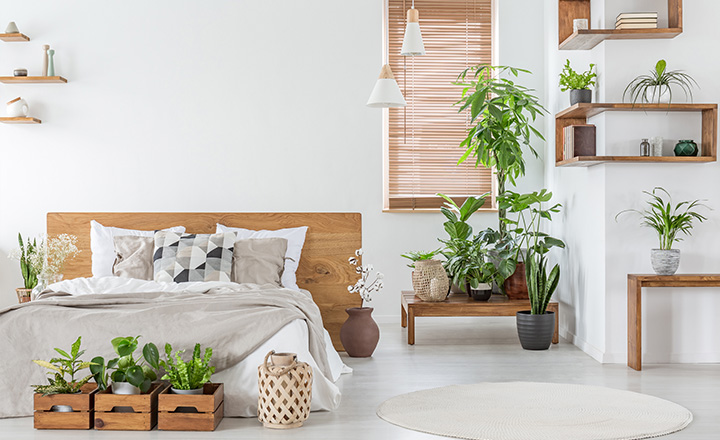 Bamboo roll up blinds