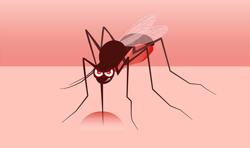 moustique genant.jpg
